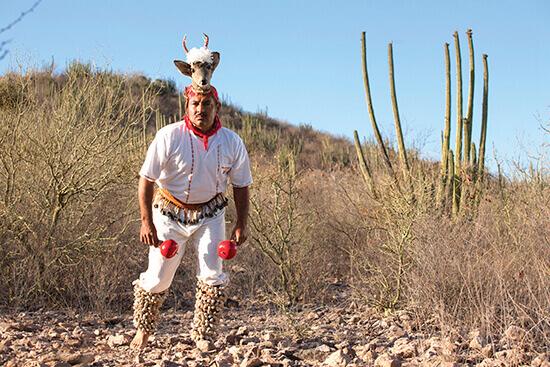 La danza regional de los venados en Sonora